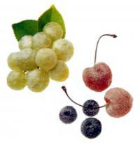 Фото фруктов с сахаром