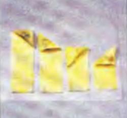Шаг 11. Порядок укладки полосы