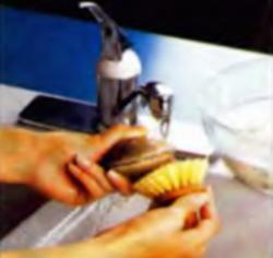 Шаг 1. Очистка моллюсков