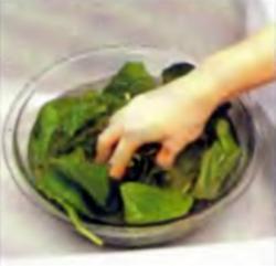 Шаг 1. Прополаскивание листьев в холодной воде