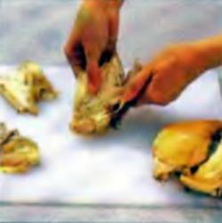 Шаг 2. Удаление костей из курицы