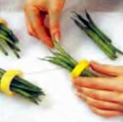 Шаг 3. Оформление бобовых пучков